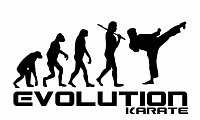 Karate evoluce