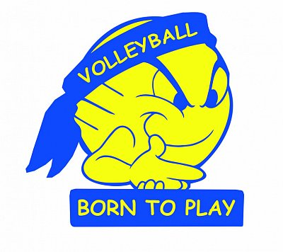 volleyball_born