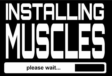 installing_muscles
